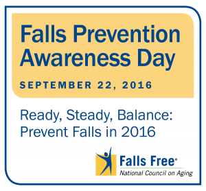 In Honor of Falls Prevention Awareness Day, Check out the Benefits of a Walk In Tub